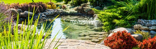 Sydney garden design and landscaping services