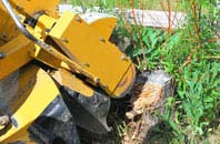 Sydney tree stump grinding services